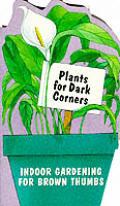 Plants For Dark Corners