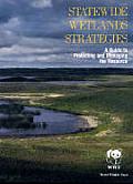 Statewide Wetlands Strategies