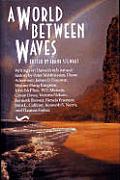 World Between Waves A Shearwater Book