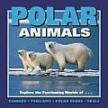 Polar Animals Explore The Fascinating Wo