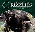 Lives of Grizzlies: Alaska