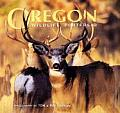 Oregon Wildlife Portfolio