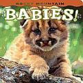 Rocky Mountain Babies! (Large Print)