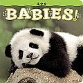 Zoo Babies! (Babies!)