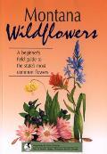 Montana Wildflowers (Wildflowers for Beginners)