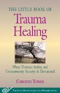 Little Book of Trauma Healing When Violence Strikes & Community Security Is Threatened
