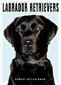 For The Love Of Labrador Retrievers