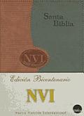 NVI Spanish Large Print Bible - Duotone Brick/Gray