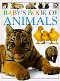 Babys Book Of Animals
