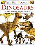 Big Book Of Dinosaurs A First Book For