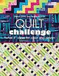 Quilt Challenge What If Ideas for Color & Design