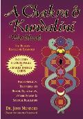 Chakra & Kundalini Workbook Psycho Spiritual Techniques for Health Rejuvenation Psychic Powers & Spiritual Realization