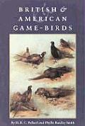 British & American Game-Birds
