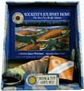 Sockeyes Journey Home The Story of a Pacific Salmon With Stuffed Sockeye