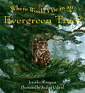 Where Would I Be in an Evergreen Tree? Cover