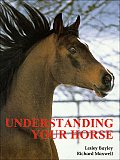 Understanding Your Horse How to Overcome Common Behaviour Problems