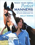 Teach Your Horse Perfect Manners