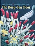 Deep Sea Floor