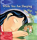 While You Are Sleeping: A Lift-The-Flap Book of Time Around the World Cover