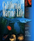 California Marine Life