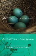 Multiply Your Blessings A 90 Day Prayer Partner Experience