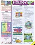Biology Laminate Reference Chart The Basic Principles of Biology