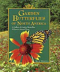 Garden Butterflies of North America: A Gallery of Garden Butterflies & How to Attract Them