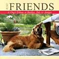 Just Friends A Dogs Tribute To Buddies P