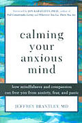 Calming Your Anxious Mind How Mindfulnes