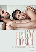 Best Gay Romance 2013