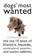 Dogs Most Wanted The Top 10 Book Of H