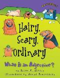 Hairy Scary Ordinary What Is an Adjective