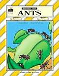 Ants: Thematic Unit