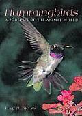 Hummingbirds A Portrait Of The Animal
