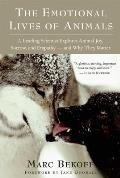 Emotional Lives of Animals : a Leading Scientist Explores Animal Joy, Sorrow, and Empathy - and Why They Matter (08 Edition)