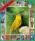 Audubon Songbirds & Other Backyard Birds Picture-A-Day Wall Calendar Cover