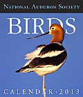 Audubon Birds Gallery Calendar 2013 Cover