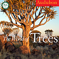 Audubon the World of Trees Calendar Cover
