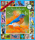 Audubon Songbirds & Other Backyard Birds Calendar