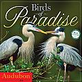 Cal14 Audubon Birds of Paradise Wall Calendar 2014