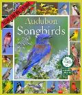 Audubon Songbirds & Other Backyard Birds Picture-A-Day Wall Calendar 2016