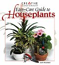 Easy Care Guide To Houseplants