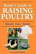 Raising Poultry (Storey's Guides to Raising) Cover