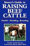 Storeys Guide to Raising Beef Cattle Health Handling Breeding