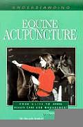 Understanding Equine Acupuncture Your Guide to Horse Health Care & Management