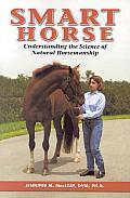 Smart Horse
