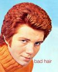 Bad Hair: A Collection of Bad Hairstyles So Bad You Can't Look Away Cover