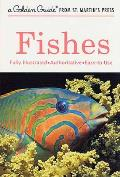 Fishes : Guide To Fresh- and Salt-water Species (87 Edition)