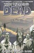 Walking Dead Volume 3 Safety Behind Bars
