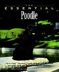 Essential Poodle